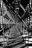 Metal bridge train Royalty Free Stock Image