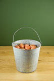 Metal bucket of eggs Royalty Free Stock Photo