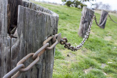 Metal chain connecting wood logs together. Royalty Free Stock Images