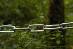 Metal chain in the foreground, separating the viewer from the blurred natural background royalty free stock image