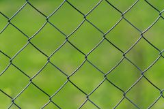 Metal chain-link fence on a green grass background royalty free stock photography