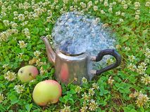 Metal coffee pot on grass royalty free stock photos