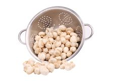 Metal colander with fresh champignon mushrooms. Royalty Free Stock Photos