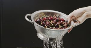A woman`s hand raises a colander with a ripe wet cherry, from which flows water with splashes and drops on a black. A metal colander with a red large cherry is stock video