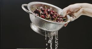 A woman`s hand raises a colander with a ripe wet cherry, from which flows water with splashes and drops on a black. A metal colander with a red large cherry is stock footage