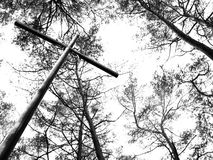 Metal cross and trees. Metal cross in the forest, B&W photo stock photos