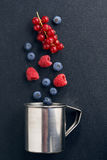 Metal cup and berries on a black background Royalty Free Stock Images