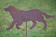 Metal Cutout of a Golden Retriever Dog on Grass Background Royalty Free Stock Images