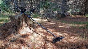 A metal detector in a forest. Seeking gold   green detector metal finding precious rare sediment sand  electronics technology scanning outdoors sunny mining stock image