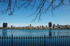 Metal do céu azul dos branchs da vista de Central Park Imagem de Stock Royalty Free