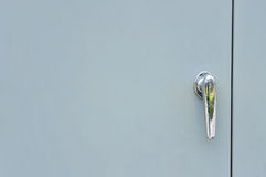 Free Metal Door Handle Stock Photography - 25797252