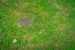 Metal drain cover. Rusty metal drain cover on green grass Stock Images