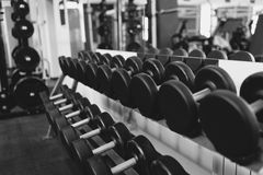 Metal dumbbells lying on gym fitness club Royalty Free Stock Photos