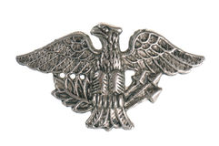 Metal eagle. Old military symbol - metal eagle isolated on white background royalty free stock image