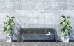 Metal el banco al aire libre con las plantas decorativas en el fondo brillante del muro de cemento, exterior al aire libre Imagen de archivo