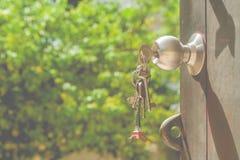 Metal el botón de puerta en puerta abierta de madera y las llaves en la puerta con el fondo natural verde Fotos de archivo libres de regalías