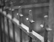 Metal el pomo de espada en una cerca lirio-formada con el fondo borroso foto de archivo