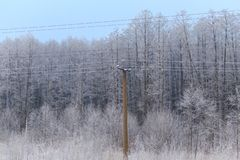 Metal electric pole in the winter in nature.  royalty free stock images