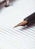 Metal feather pen Stock Photo
