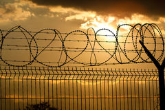 Metal Fence with Barbed Wire Stock Image
