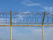 Metal fence with barbed wire Stock Photos