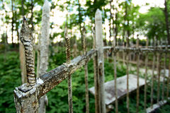 Metal fence in the cemetery Royalty Free Stock Images