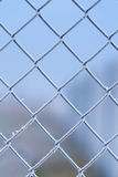 Metal fence covered by frost Stock Image
