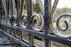 Metal fence covered with frost Royalty Free Stock Images
