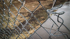 Metal fence covered by ice Stock Photos