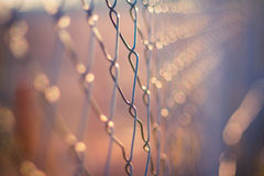 Metal fence detail. Abstract concept. Fence against beautiful bokeh background. Sunset Stock Photography