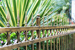 Metal iron fence. With copper color in garden Royalty Free Stock Image