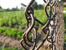 Metal fence. The metal fence in russian garden macro Stock Photos