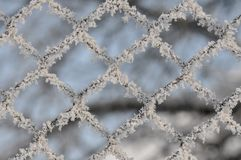 Metal fence with snow Royalty Free Stock Photo