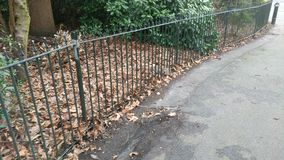 Metal fence splitting the picture diagonally between road and leaves Royalty Free Stock Images