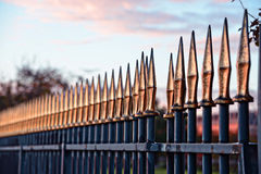 Metal fence in Tuileries garden Stock Photo