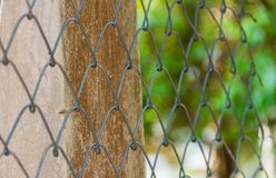 Metal fence wire. Close-up Metal fence wire natural background blur Royalty Free Stock Photo
