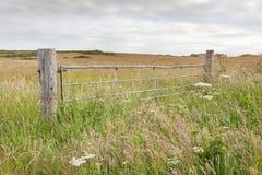 Metal field gate in a meadow Stock Photo