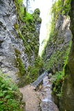 Metal footbrige over creek inside the sapte scari canyon from Brasov. Royalty Free Stock Photo