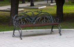 Metal forged ławka w lato parku Obraz Stock
