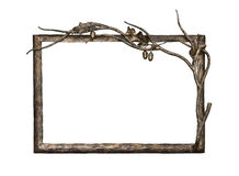 Metal frame with oak ornament. Isolated on white background (with clipping path stock photo