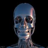 Metal głowa w chromu Fotografia Stock