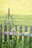 Metal garden ornament and wooden fence. Metal garden ornament in front of wooden fence with white flowers and grass Stock Image