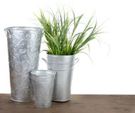 Metal gardening containers with grass Royalty Free Stock Photography