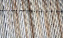 Metal garrage door Royalty Free Stock Photos