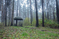 Metal gazebo in autumn park. Cold rainy autumn Stock Images