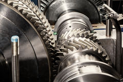 Metal gears. Gear wheels of the engine Royalty Free Stock Photos