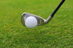 Metal golf driver Stock Photos