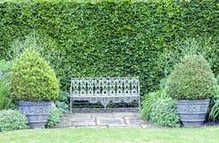 Vintage old bench between plant pots in summer garden Stock Image