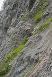 Metal grid. Chained precipice of a mountain for erosion Stock Photos