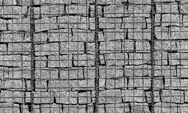 Metal grid for climbing vining plants on the wall of grey granit slabs Stock Photos